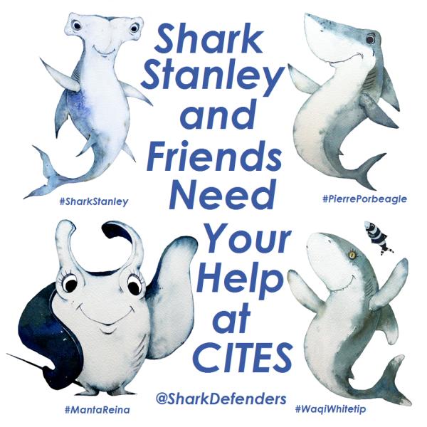 Shark Stanley