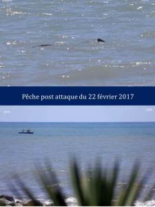 peche-post-attaque-du-22-fevrier-2017